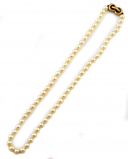 Collar corto de perlas cultivadas de 5,5 a 6 mm con cierre