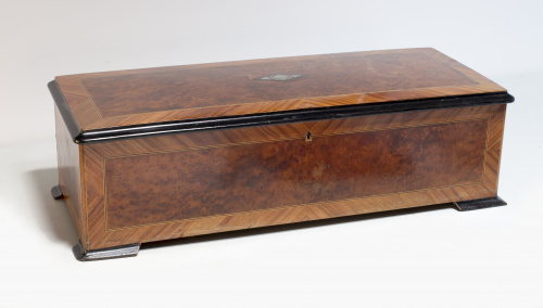 Caja Napoleón III de madera de palo de rosa y madera de raí