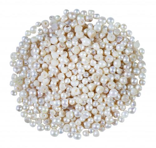 Lote de 824 perlas cultivadas costadas para aplicar en joyas
