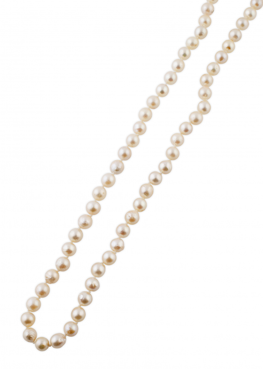 Collar de un hilo de perlas cultivadas con cierre que dibuj