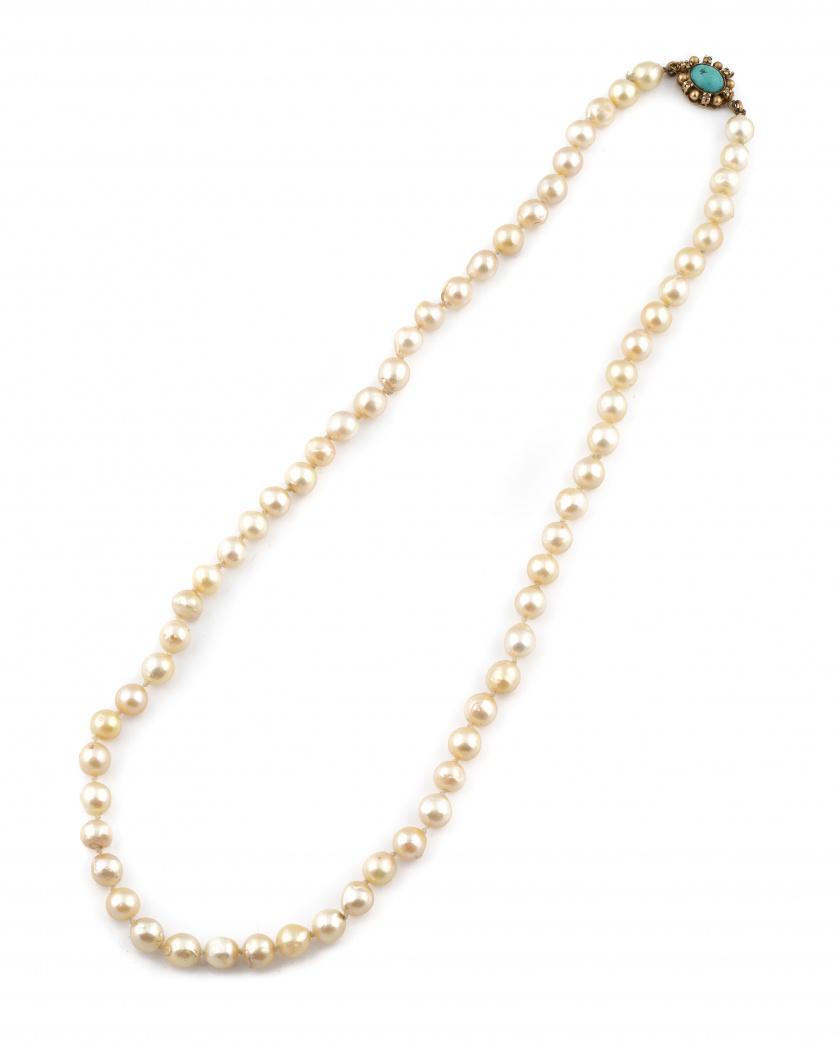 Collar de perlas cultivadas de tamaño entre 8 y 10 mm. de d